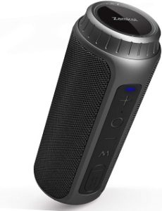 What Types of Portable Speakers are there?