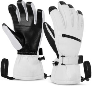 Buying the Best Ski Gloves