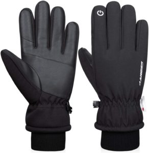 What types of Ski Gloves are there?